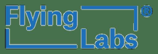 FL-logotype-BLUE-Trademark-1